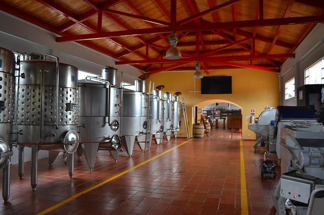 Valpolicella-wijn