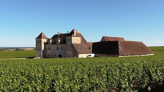 Chateau Wijn