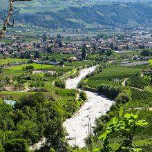 Lugana-wijn
