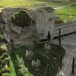 Griekse Wijn – Wijnland met een Lange Wijn Geschiedenis!